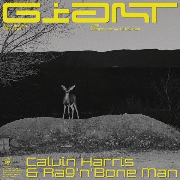 Giant (Ft.Rag n bone Man) - Calvin Harris