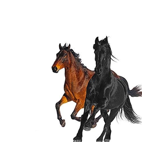 Old Town Road - Lil Nas X & Billy Ray Cyrus